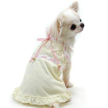 Got My Eye On You Eyelet Dog Dress