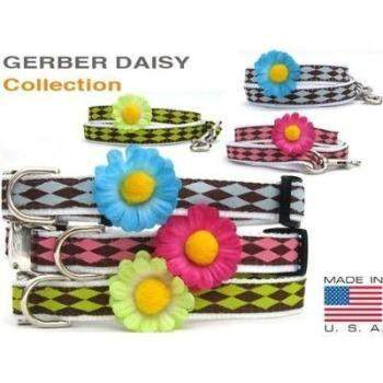 Gerber Daisy Collar Collection - All Metal Buckles-Paws & Purrs Barkery & Boutique