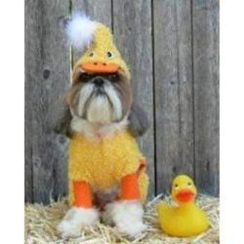Doggie Design Duck Dog Costume-Paws & Purrs Barkery & Boutique