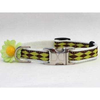 Gerber Daisy Dog Collar - All Metal Buckles(Green) - Paws & Purrs Barkery & Boutique