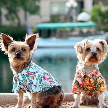 Doggie Design Hawaiian Camp Dog Shirt-Sunset Hibiscus-Paws & Purrs Barkery & Boutique
