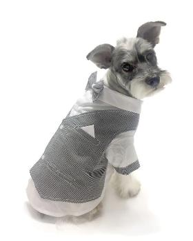Oscar Newman Licensed to Chill Dog Tuxedo Top-Paws & Purrs Barkery & Boutique