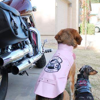 Doggie Design Pink Biker Dawg Motorcycle Dog Jacket-Paws & Purrs Barkery & Boutique