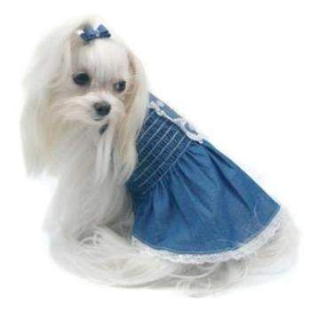 Oscar Newman Light Up My Sky Chambray Dog Dress-Paws & Purrs Barkery & Boutique