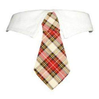 Pooch Outfitters Carter Dog Tie & Shirt Collar Set-Paws & Purrs Barkery & Boutique