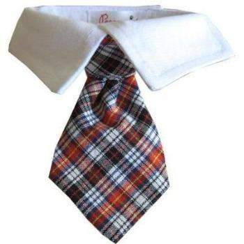 Pooch Outfitters Nicholas Dog Tie & Shirt Collar Set-Paws & Purrs Barkery & Boutique