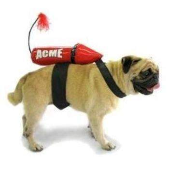 Pampet Puppe Love Acme Rocket Dog Costume-Paws & Purrs Barkery & Boutique