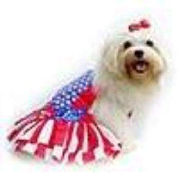 Pampet Puppe Love Wonder Dog Costume-Paws & Purrs Barkery & Boutique