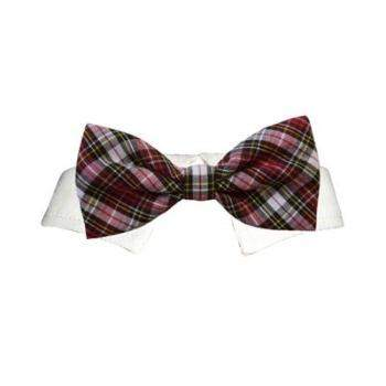 Jeremy Dog Bow Tie & Shirt Collar Set