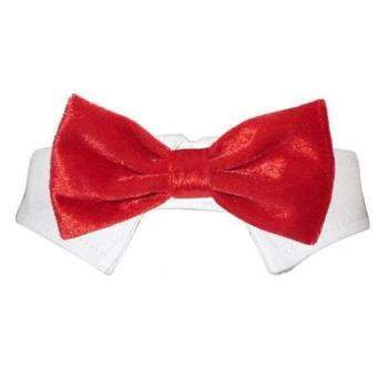 a close up of a bow tie