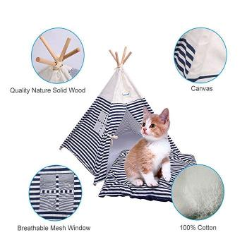 Portable Tee Pee with Mat.