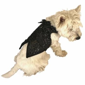 Dog Squad Light Gold Sequined Gentlemen's Dog Tuxedo-Paws & Purrs Barkery & Boutique