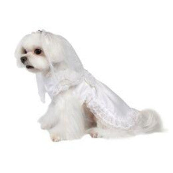 Pooch Outfitters Vera Dog Wedding Dress with Veil-Paws & Purrs Barkery & Boutique