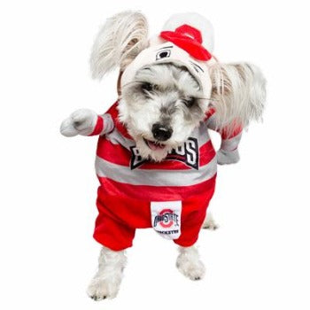 Pet Krewe OSU Brutus Buckeye Mascot Dog Costume-Paws & Purrs Barkery & Boutique