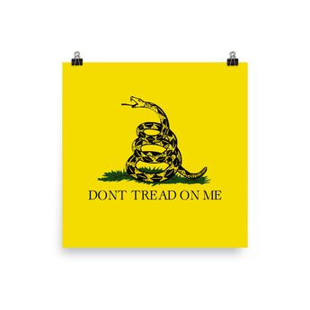 Gadsden Flag Traditional (No Frame)
