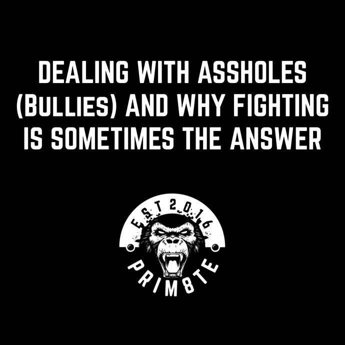 Dealing with Assholes (Bullies) and Why Fighting is Sometimes the Answer