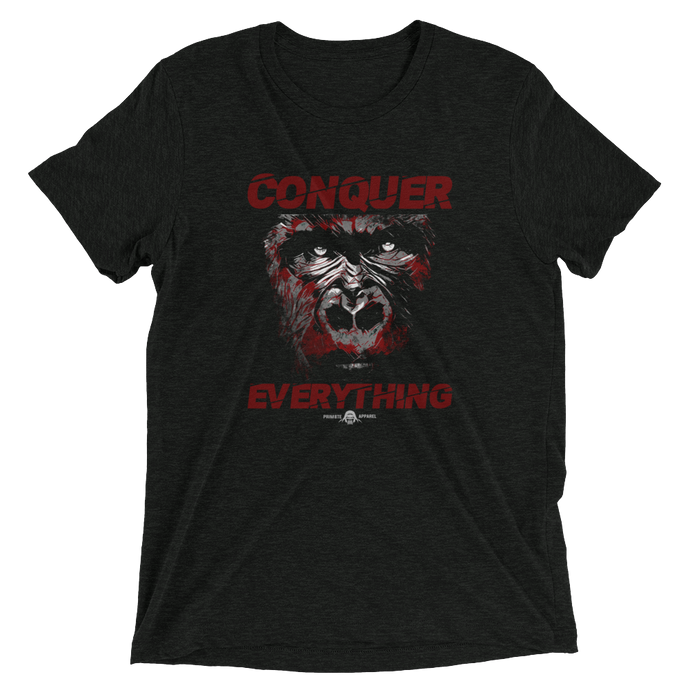 Conquer Everything