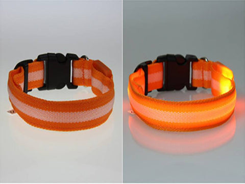 Pet Collar - Pet Safety Collar - Glow In The Dark