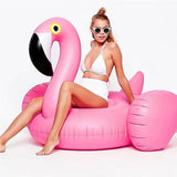 Giant Inflatable Pool Float - Flamingo & Swan