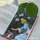 Beauty and the Beast: A Ladybird Personalised Book - Personalised Gift From Personally Presented
