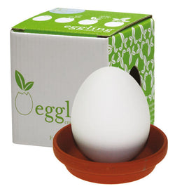 Eggling Egg Planter *seeds included*