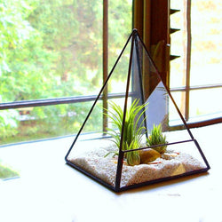 Modern Pyramid Glass Terrarium