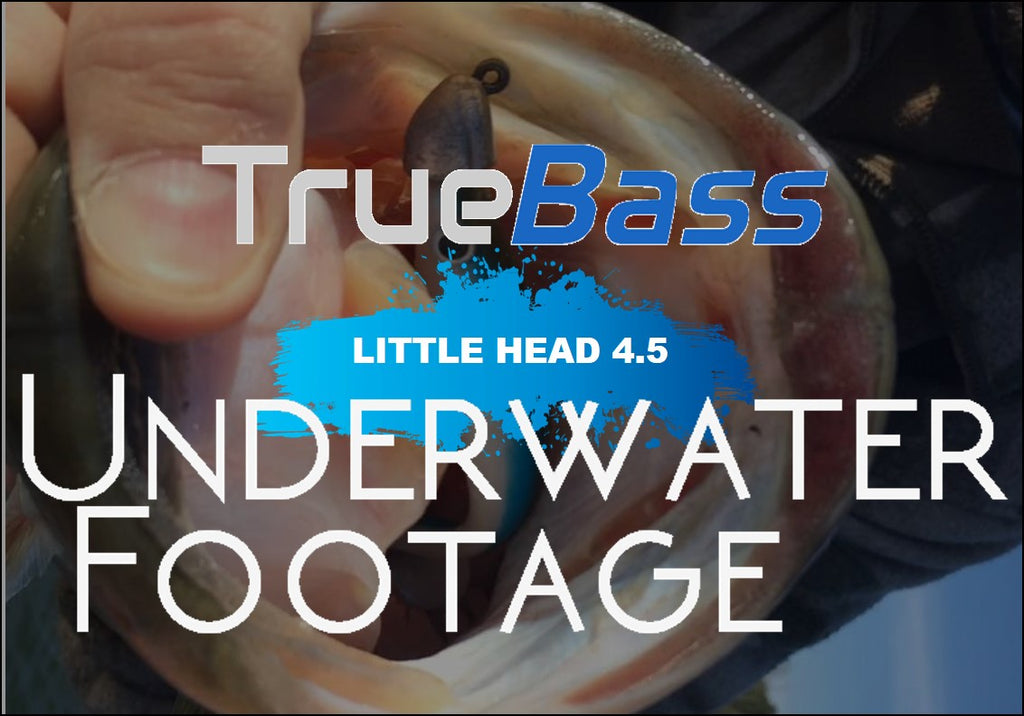 Swimbait - Underwater Footage - True Bass Little Head 4.5