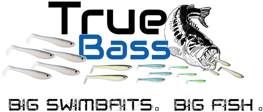 True Bass Fishing