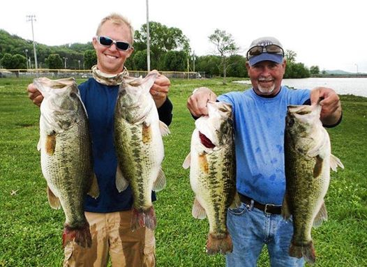 Guntersville Fishing Guide - True Bass Swimbaits