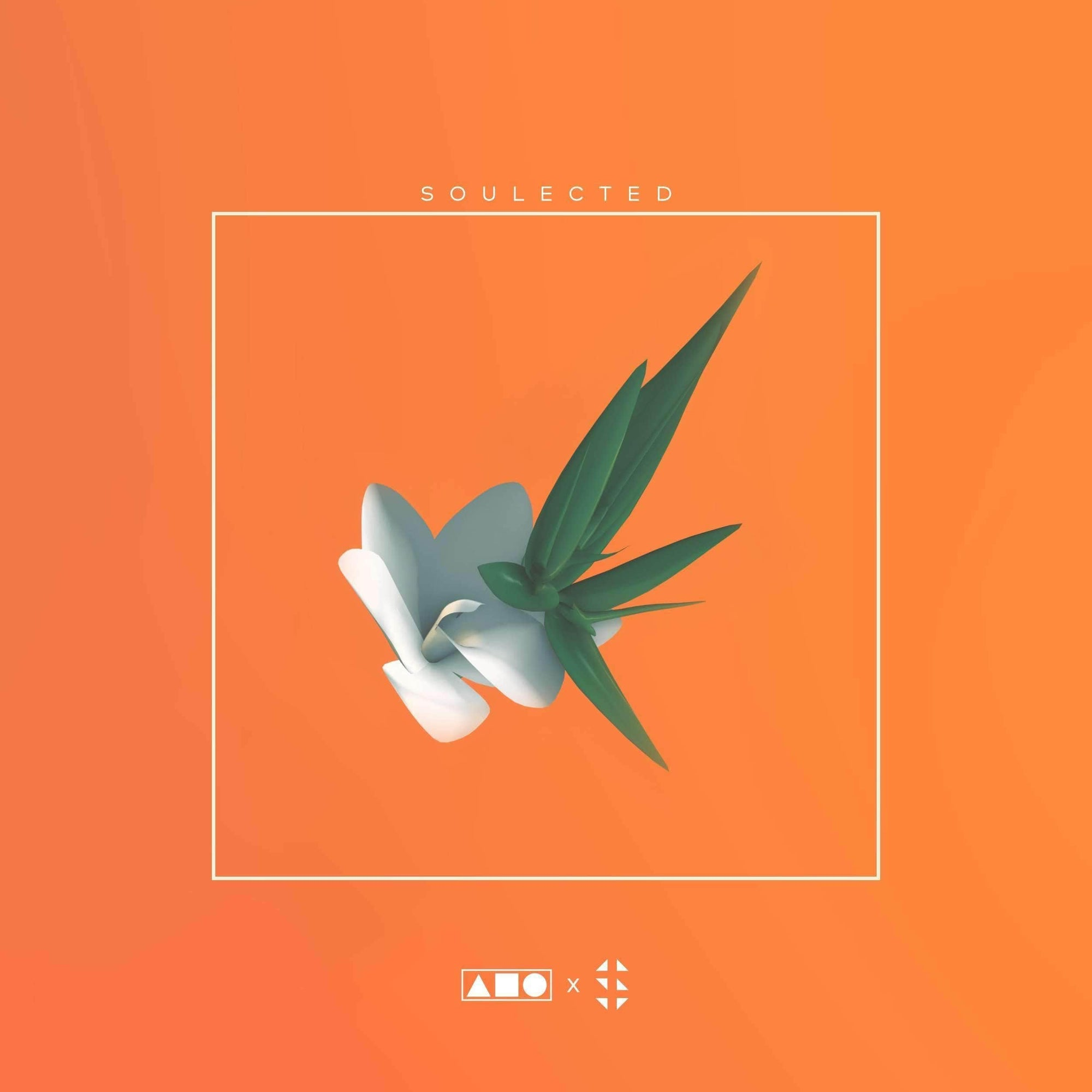 Soulected | Hip Hop - Soul Sample Pack Squadpack x Samplified