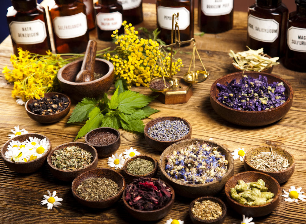 Image result for herbalist