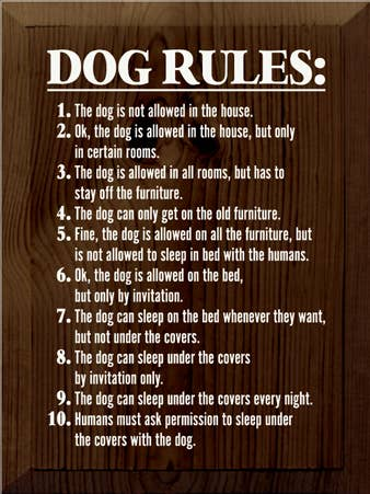 Dog Rules Funny Wood Sign