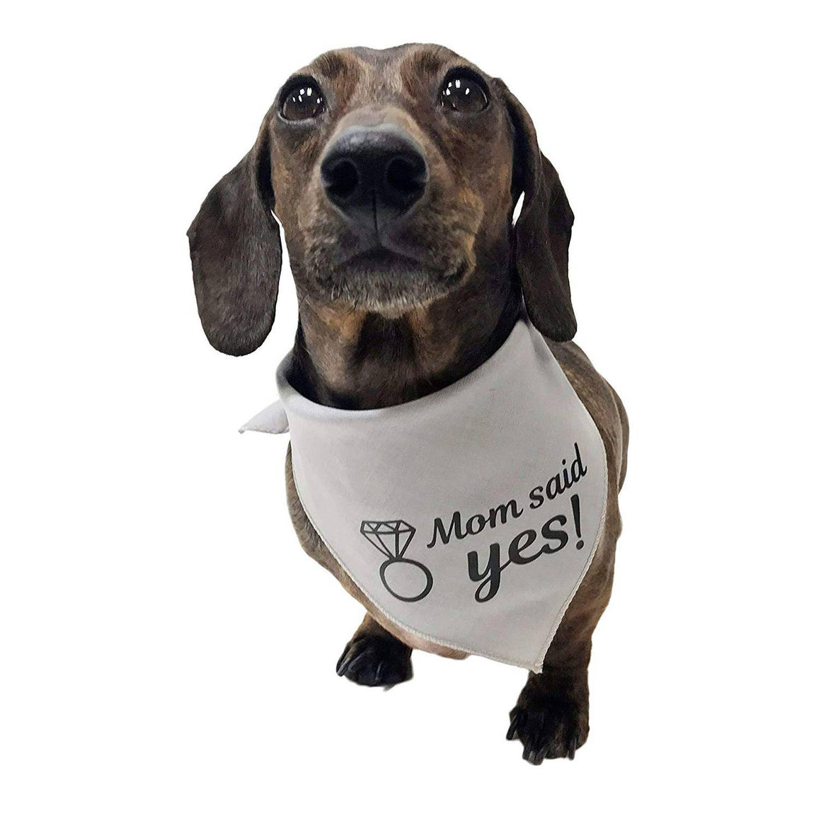 Midlee Mom Said Yes Dog Bandana Engagement Announcement - Small