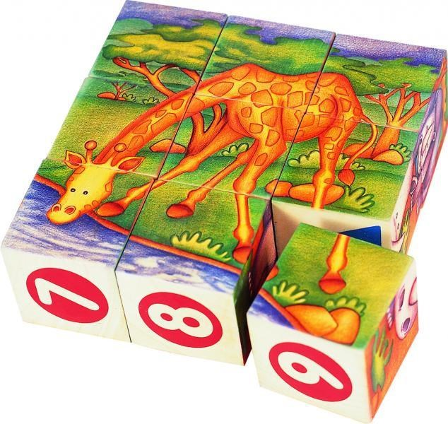 Wooden Safari Cubes