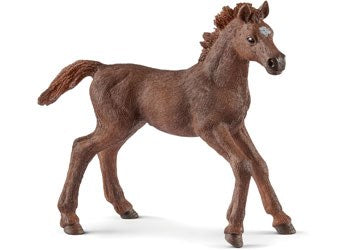 Schleich 13857 -  English Thoroughbred Foal