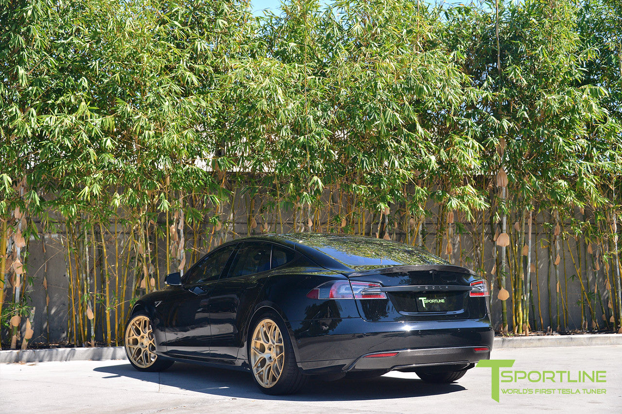 Black Tesla Model S 1.0 with Ghost Gold 21 inch TS117 Forged Wheels