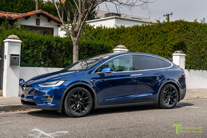 "Model X with 20"" TSS"