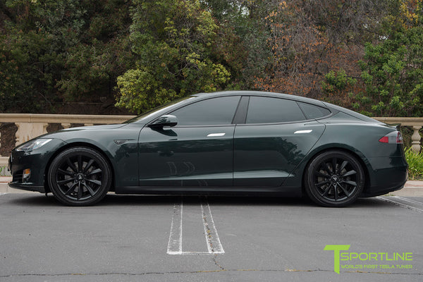 going green tesla motor sports The tesla generator can help us go green by eliminating the need for power plants unfortunately, the technology is not readily available due to lack of funding.