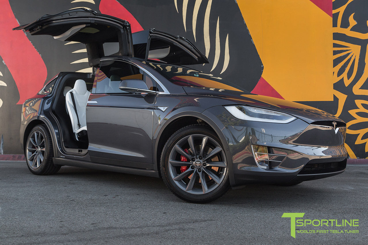 Midnight Silver Metallic Model X with 20