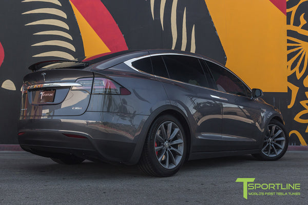 Model X With 20 Tst Tagged Color Metallic Gray