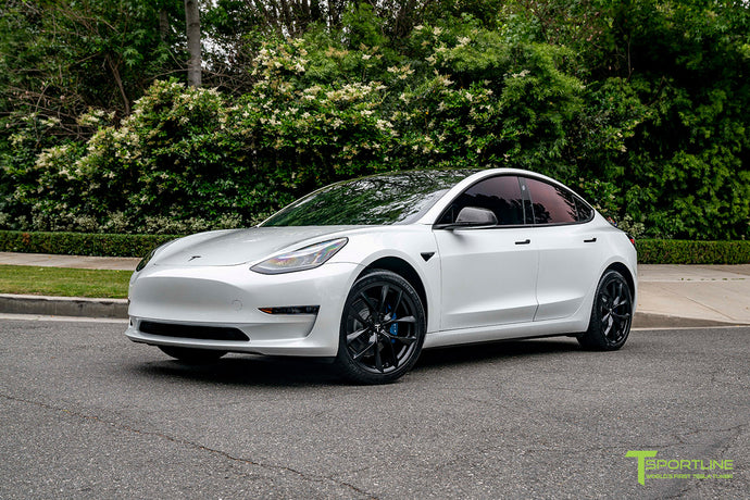 "Pearl White Model 3 with 19"" TSS and Blue Calipers"