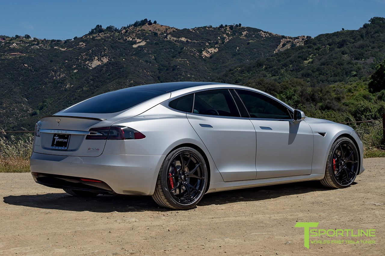 Silver Tesla Model S 2.0 with 21