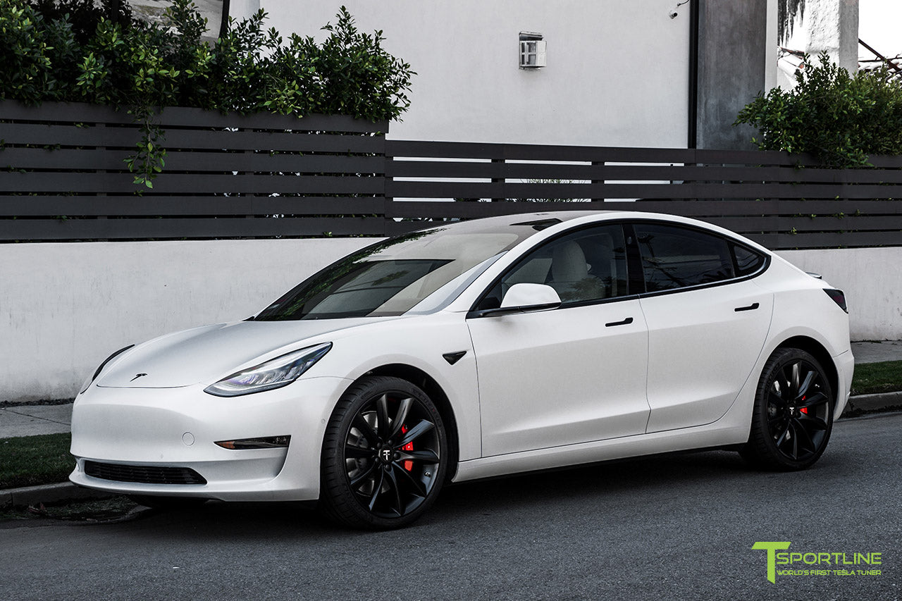 Xpel Stealth Pearl White Performance Model 3 Tagged Color