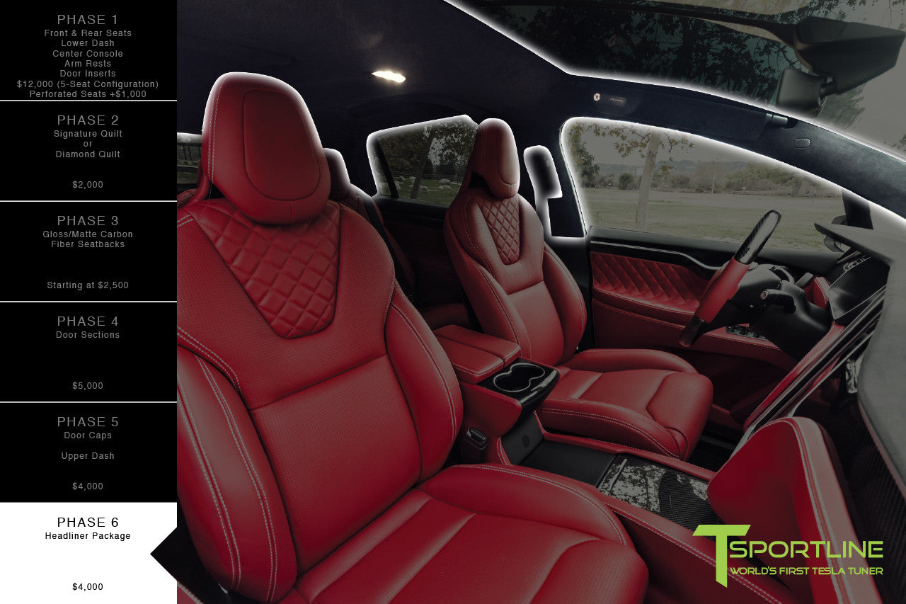 T Sportline Custom Interior Program for Model X