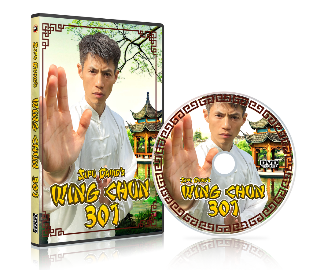 Wing Chun 301 - Authentic Yip Man Wing Chun Form 3 -