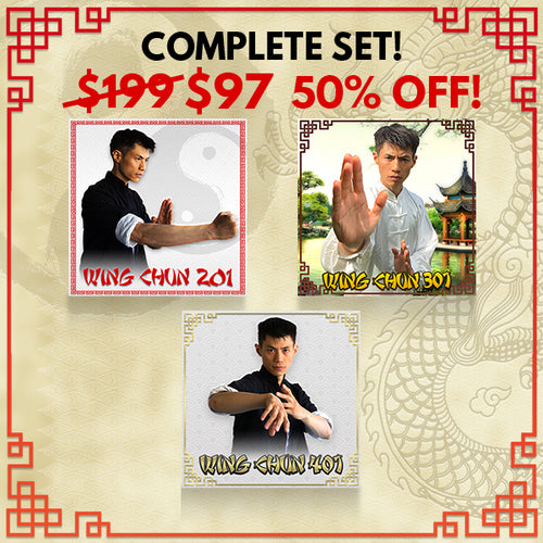 Wing Chun 201, 301, 401 Online - BUNDLE DISCOUNT - 50% OFF