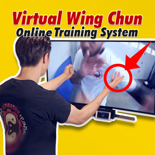 Virtual Wing Chun Online Training System - FREE TRIAL