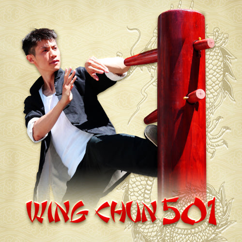 Wing Chun Wooden Dummy 501 Online