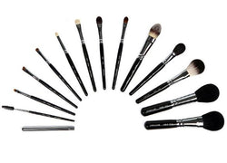 Piccasso brush 14 set