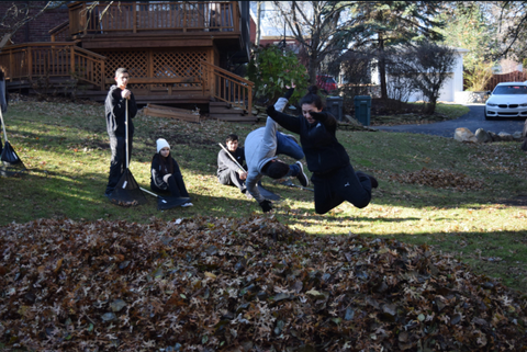 The students having fun jumping into the leaves